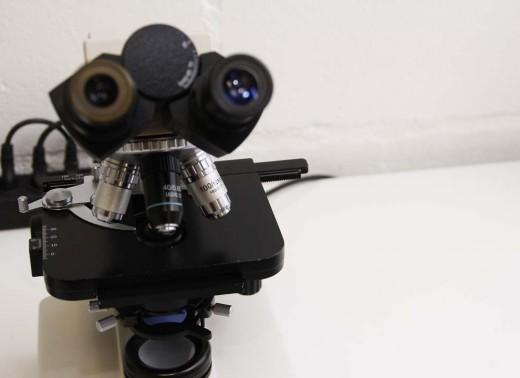 Microscopia (3)